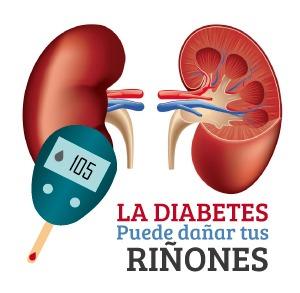 Daño en riñones por diabetes