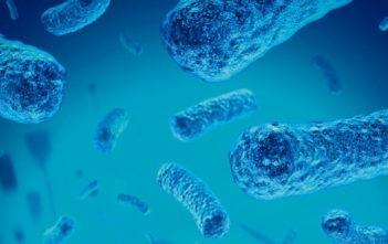 Meningitis fúngica
