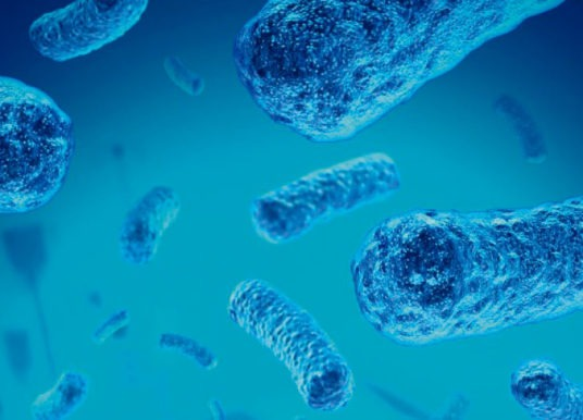 Meningitis Fúngica: Transmisión y Síntomas
