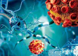 Meningitis Viral: Diagnóstico, Tratamiento y Prevención