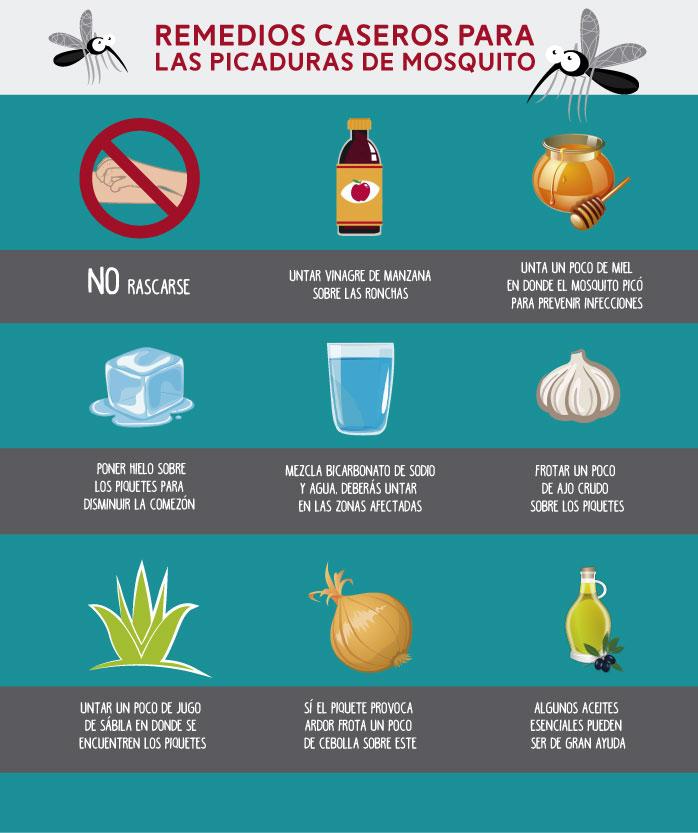 Remedios contra las picaduras de mosquito
