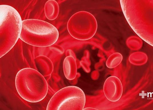 ¿Qué es la anemia?