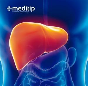 imagen de hígado