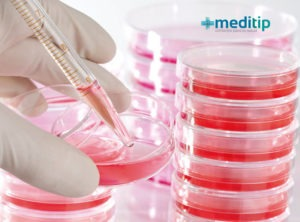 Tratamiento de células madre