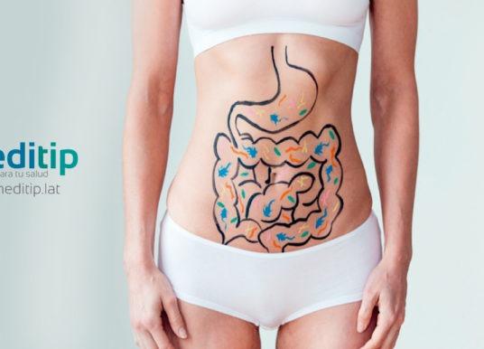 Metabolismo: definición, importancia y trastornos