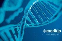 ADN o ácido desoxirribonucleico