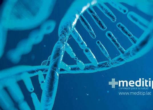 ADN: definición, función en el cuerpo y enfermedades relacionadas