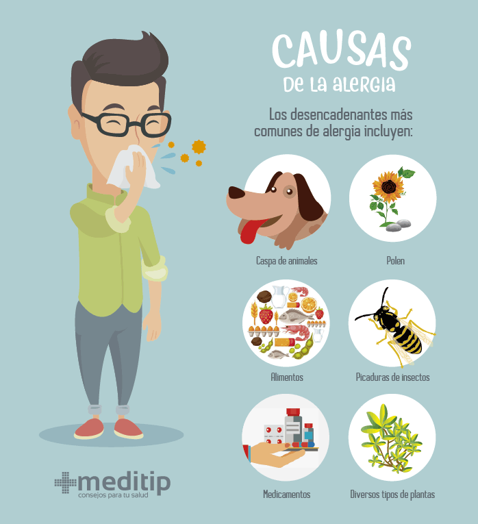 Causas de alergias