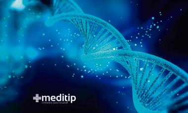 Ácido úrico: ADN