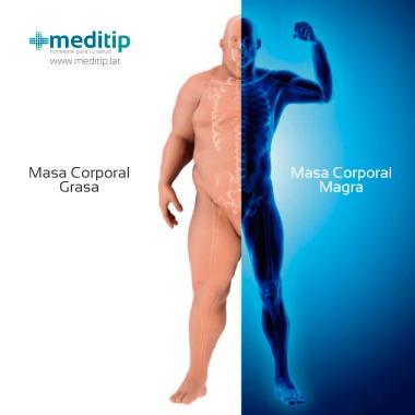 Composición corporal: diferencia entre masa corporal grasa y masa corporal magra