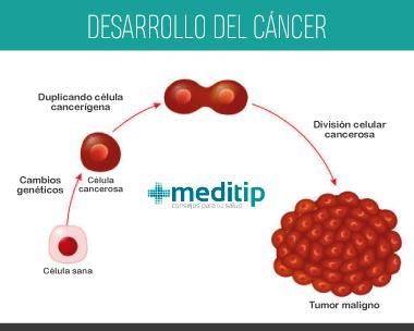 Tipos de cáncer: desarrollo del cáncer