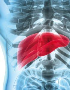 Función del hígado