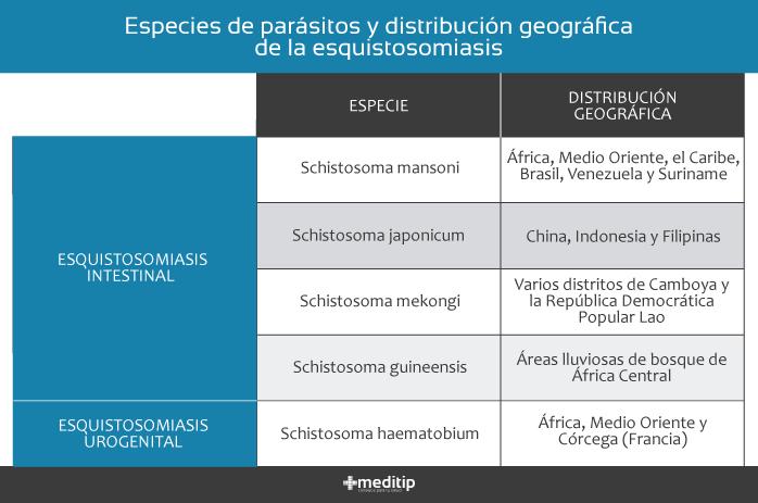 Esquistosomiasis: distribución geográfica