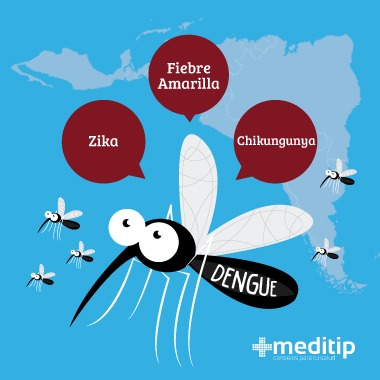 Síntomas del dengue: mosquito del dengue