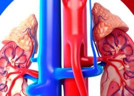 Hiperaldosteronismo y producción de la hormona aldosterona