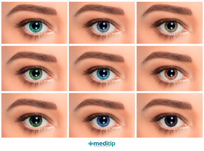 Cómo funciona el ojo: ojos de diferentes colores