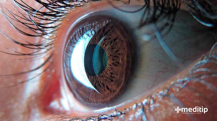 Cómo funciona el ojo: elementos de protección de la función visual, pestañas
