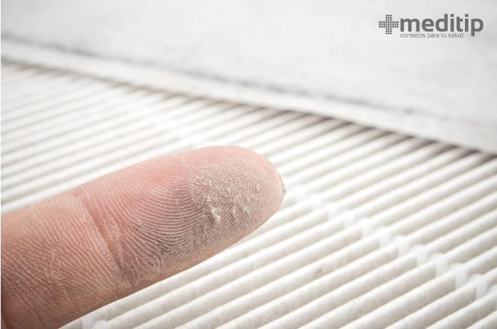 Supervivencia de los microorganismos en el aire: polvo y productos biológicos de desecho